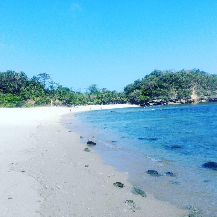 Pantai Sendiki Malang: Gambar Pantai Ngliyep Malang