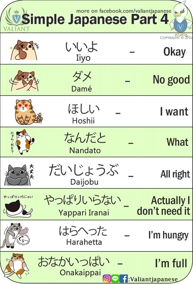 japanese part 1 Flashcards | Quizlet