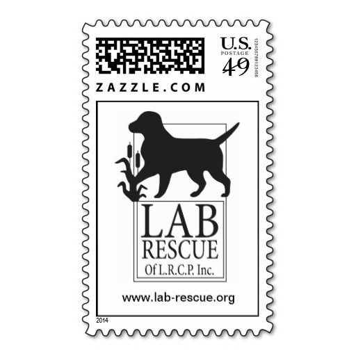 ==> reviews          Lab Rescue of the LRCP Postage Stamps           Lab Rescue of the LRCP Postage Stamps online after you search a lot for where to buyShopping          Lab Rescue of the LRCP Postage Stamps Review from Associated Store with this Deal...Cleck Hot Deals >>> http://www.zazzle.com/lab_rescue_of_the_lrcp_postage_stamps-172929504301613858?rf=238627982471231924&zbar=1&tc=terrest