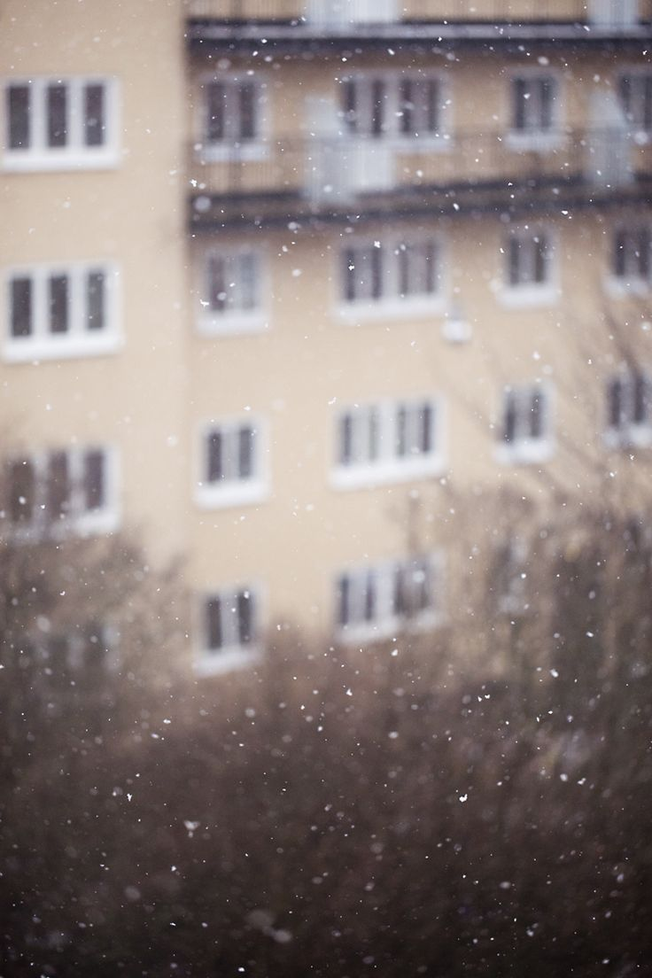 Snow, snowpictures  http://www.susannevedvik.femelle.no/