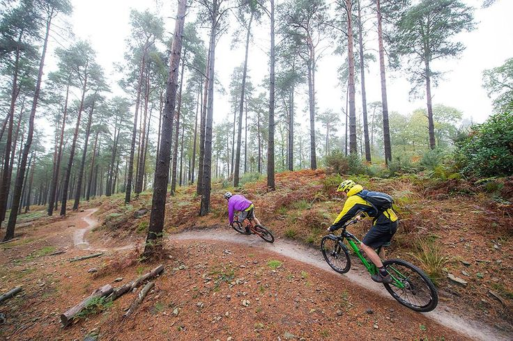 Download our free GPS route for the Surrey Hills > http://www.mbr.co.uk/?p=324674