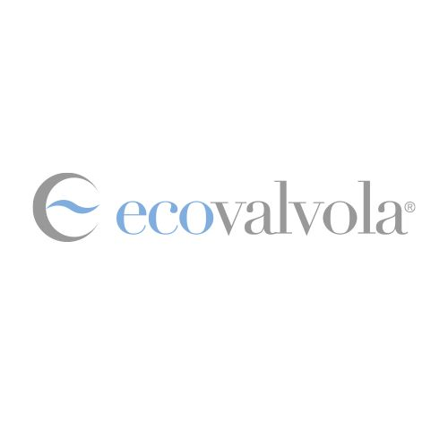 Logo Industrial Ecovalvola