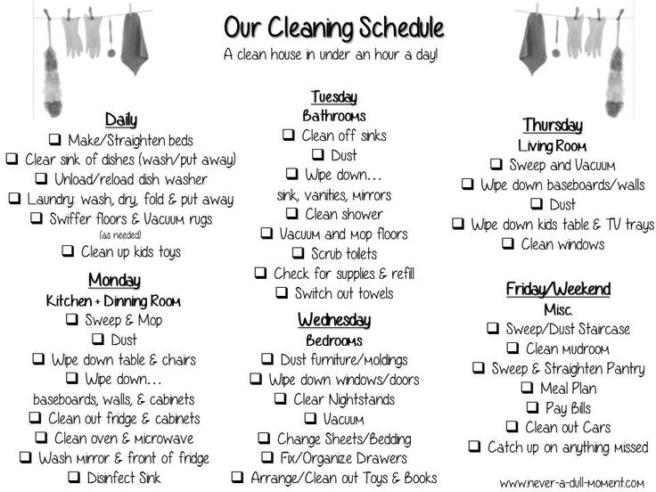 Household managment: Clean House
