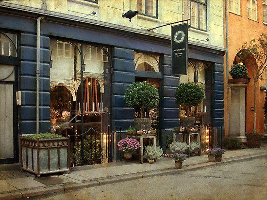 Tage Anderson, Copenhagen