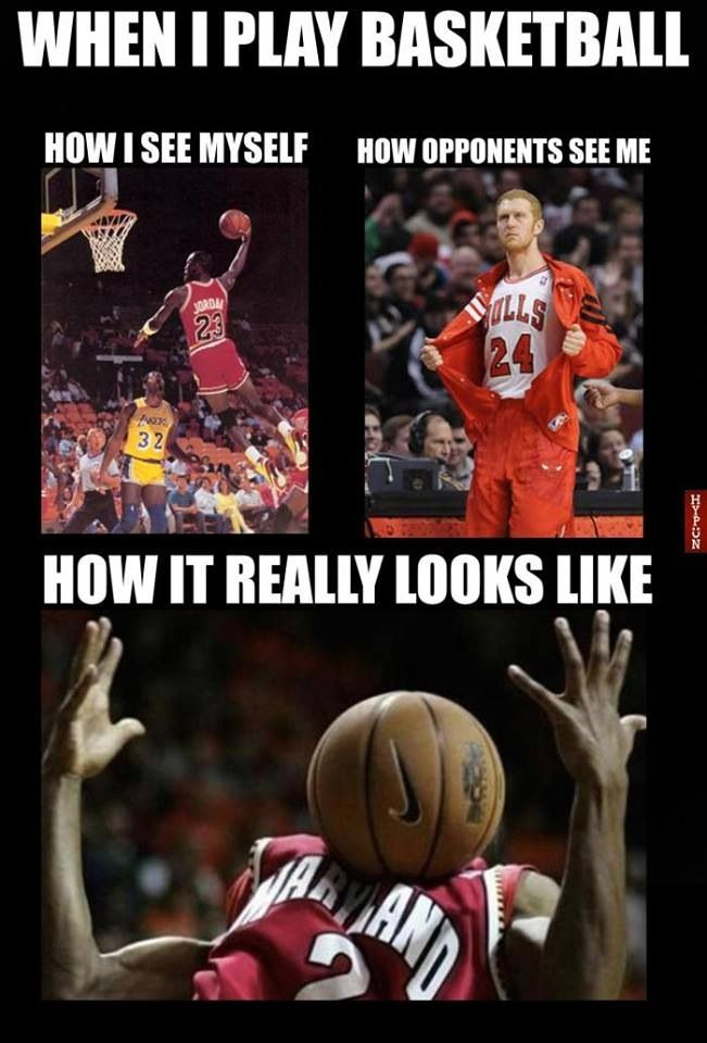 17 Best Images About Basketball Memes On Pinterest