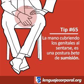 tip65-lo                                                                                                                                                                                 Más