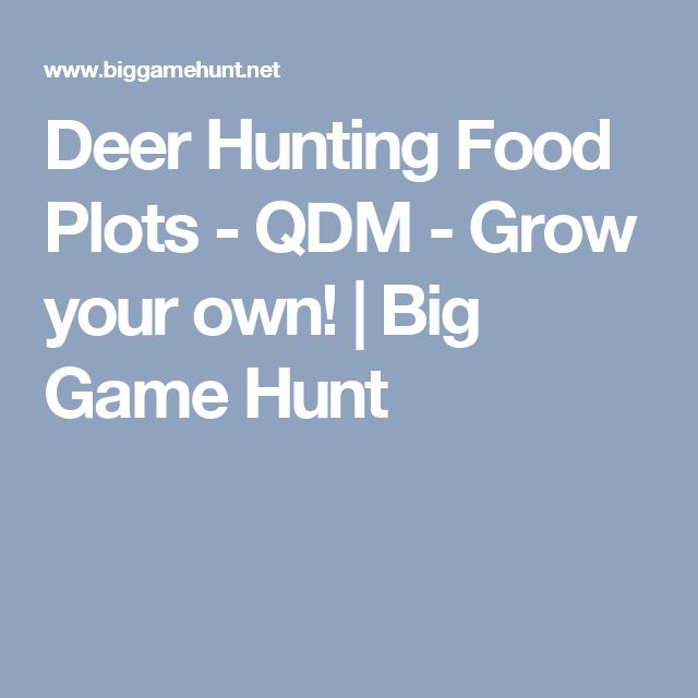Deer Hunting Food Plots - QDM - Grow your own! | Big Game Hunt