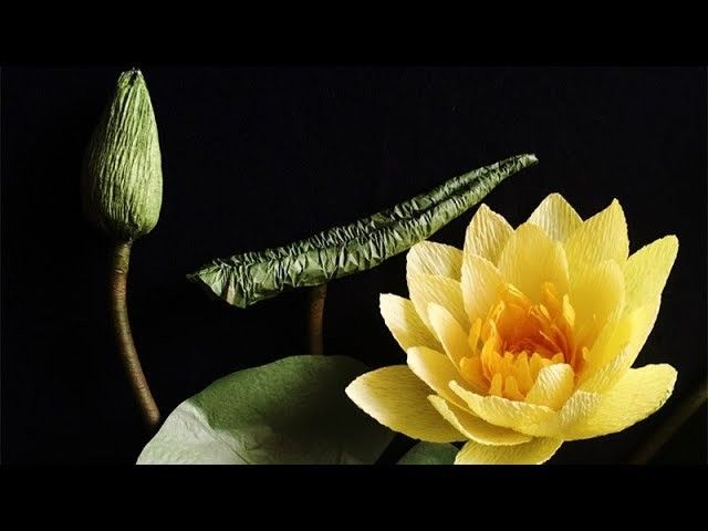 DIY paper Lotus / paper water lily / how to make water lily using ... | 480x640