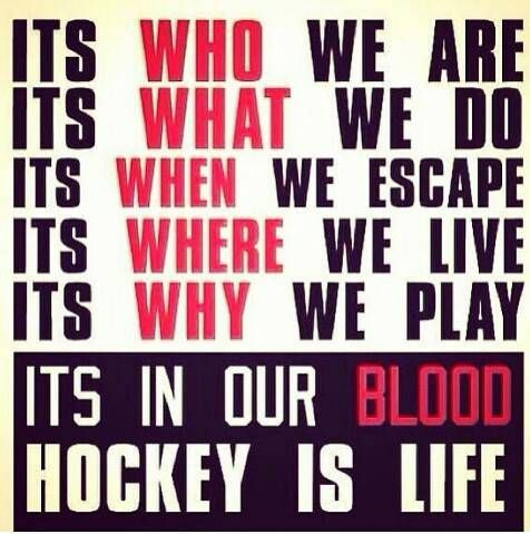 Hockey is what gets me through the week.