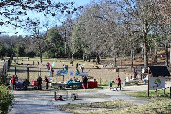 Earlewood Dog Park Columbia Sc