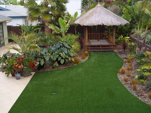 115 best images about Cool climate tropical garden ideas ...