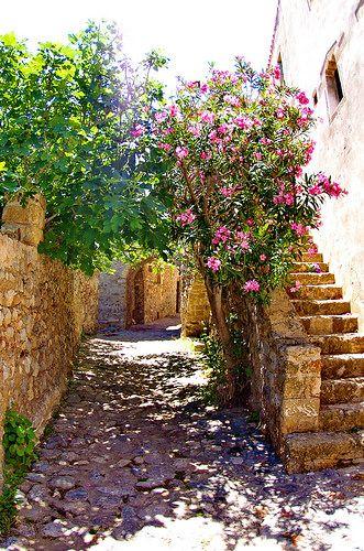 Grèce Péloponèse, Monemvasia Μονεμβασιάς 158 dans la ville basse | por paspog