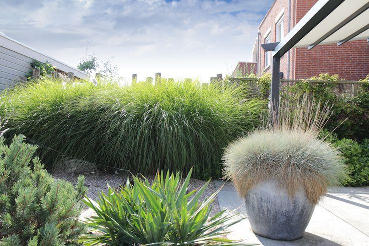 Een speelse schutting van ronde kastanje palen waar voor pennisetum is aangeplant
