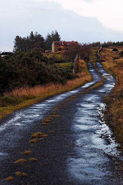 Back Road In Irlanda.