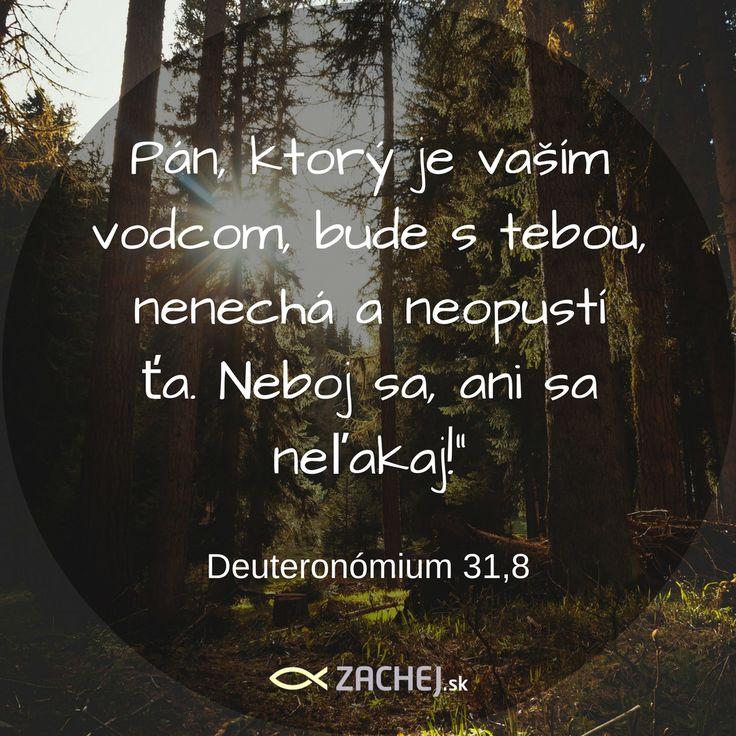 Neboj sa! Neľakaj sa! Sám Boh ti kryje chrbát a chráni ťa. Majme dnes na mysli tieto slová. #zachejsk #knihyzachej #dnescitam #citaty #quotes #biblequotes #dailyquotes