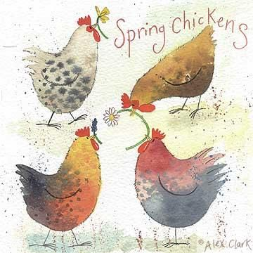'Spring Chickens' by Alex Clark (E028)