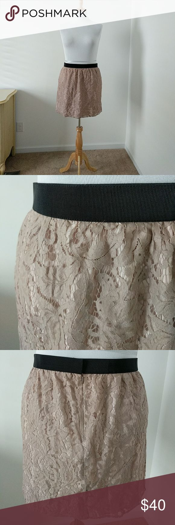 """🆕Loft Blush Mauve Lace Skirt🆕 Gorgeous! Blush lace skirt from Loft. New with tags. Outer lace is a darker, almost mauve color and the living is pale pink. The combination is stunning. Black waist band with back sip and tab (waist is not elastic).  61% cotton, 39% nylon (lining is 100% polyester). Hand washable.   Approx measurements: Length from top of waist = 19"""" Waist = 36"""" all the way around Hip= 45"""" LOFT Skirts Mini"""