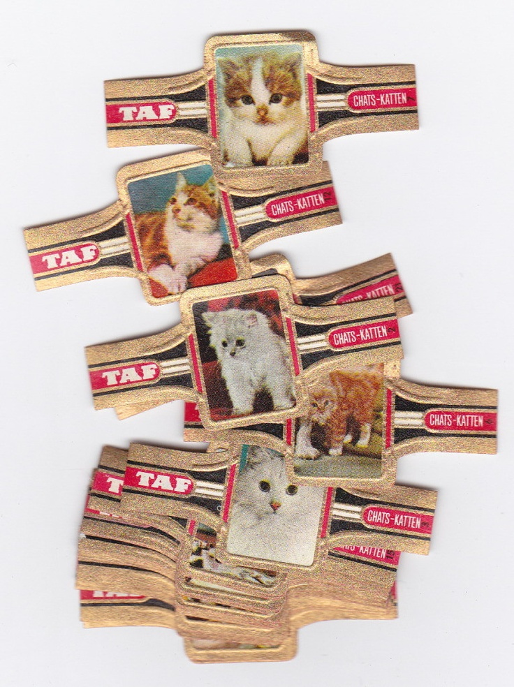 24 cigar bands with images of cats issued in 1969 by taf