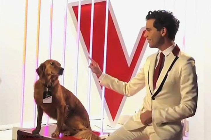 Mika with his dog - perfect