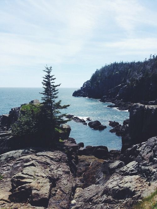 1000+ images about Maine and Canada on Pinterest | Lakes, Lobsters and Lobster house