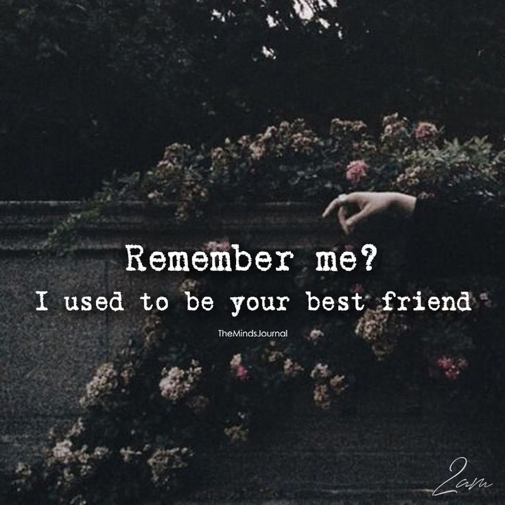 I Used To Be Your Best Friend - https://themindsjournal.com/used-best-friend/