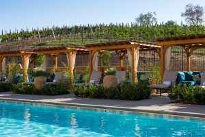 Affordable Luxury at the Allegretto Vineyard Resort | Paso Robles, CA