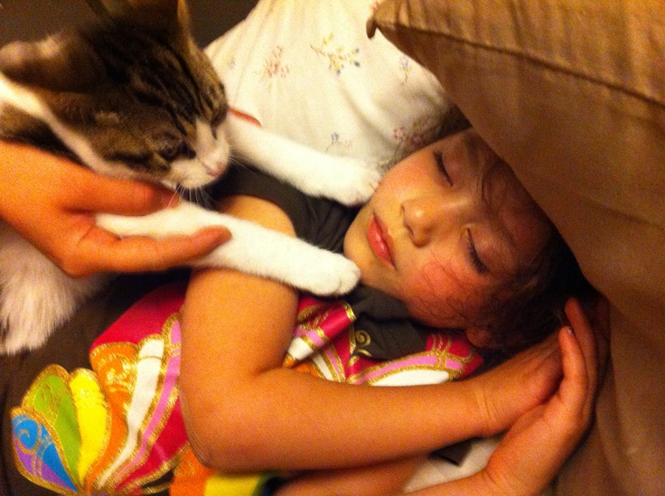 Evil cat takes care of loud child