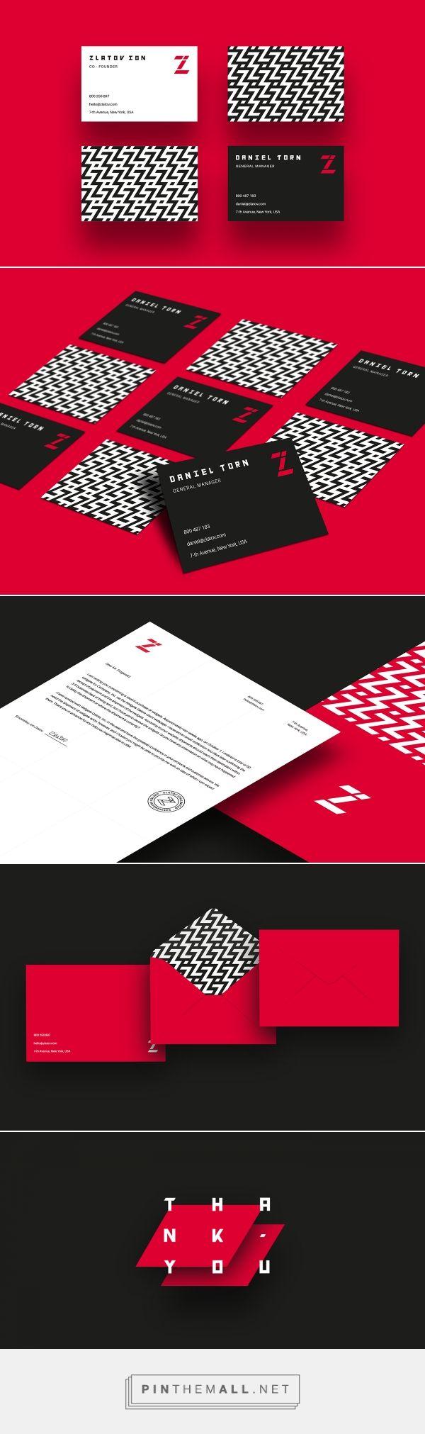 ZI Transportation Company Branding by Mihai Dolganiuc