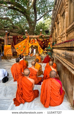 Under the Bodhi tree, Mahabodhi Temple, Bodhgaya, India. Where Buddha reached enlightenment.