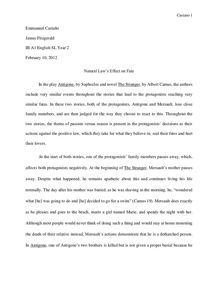 The  Best Good Essay Example Ideas On   Essay Writing