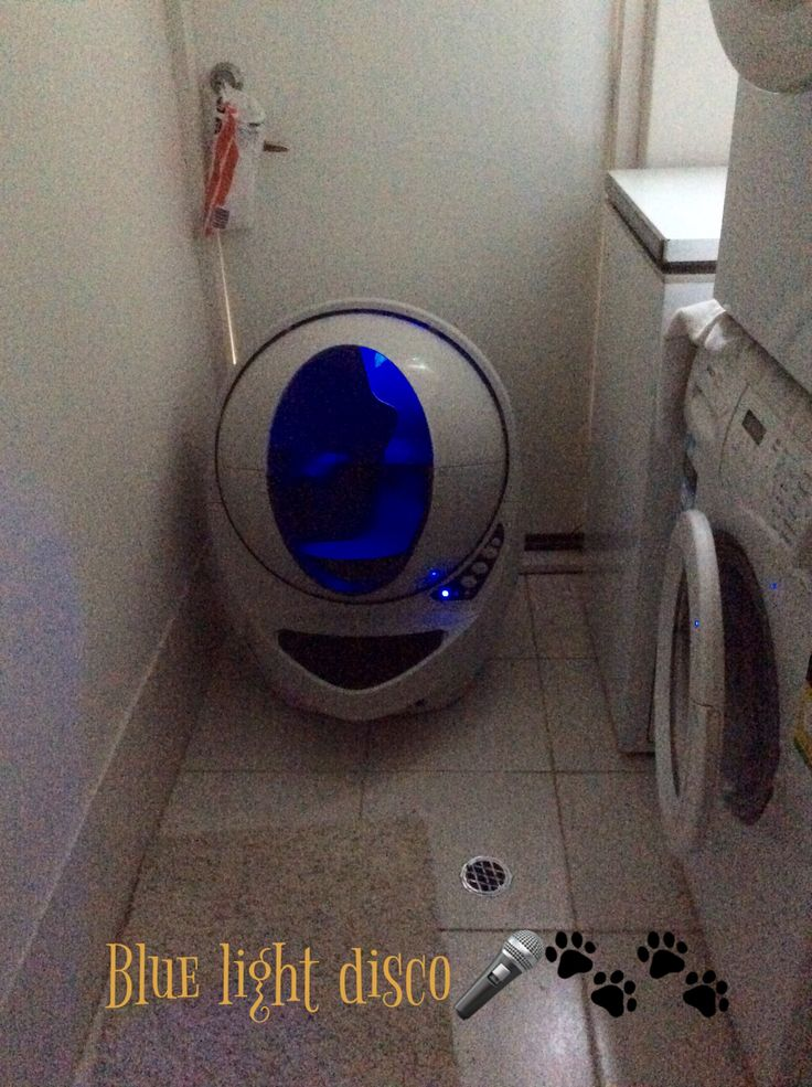How to Clean Your Litter Robot Open Air III, or any Litter