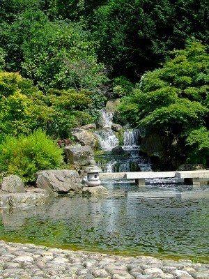 Kyoto......  Japanse tuin