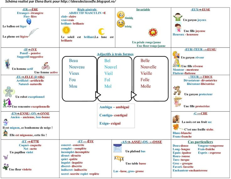 La classe de français: L'adjectif qualificatif. Tableau synthétique, vidéo et image. Applications
