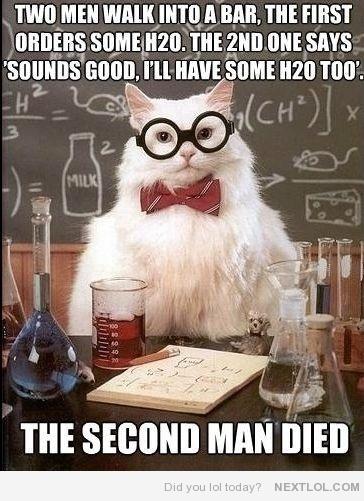 Chemistry Cat - Two men walk in a bar...: Science Jokes, Nerd Jokes, Sciencecat, Science Cat, Chemistry Humor, Nerdjokes, Chemistry Cat, Chemistry Jokes, Chemistrycat