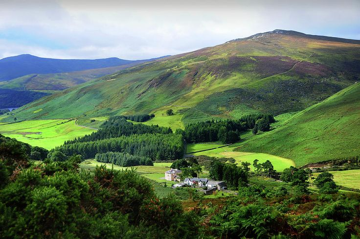 Emerald Hills. Wicklow. Ireland by Jenny Rainbow