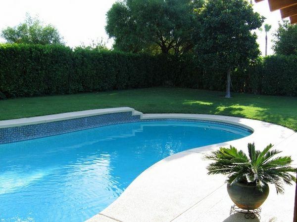 forme de piscine simple modles piscine creuse en forme de rein with forme de piscine forme b. Black Bedroom Furniture Sets. Home Design Ideas