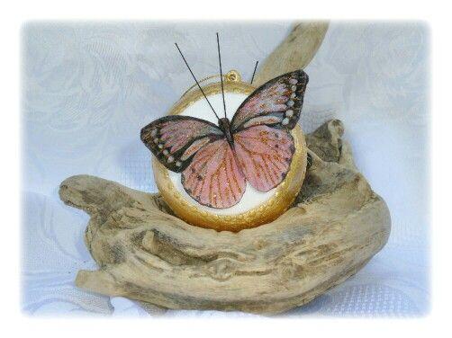 Med. Con farfalla grande marrone
