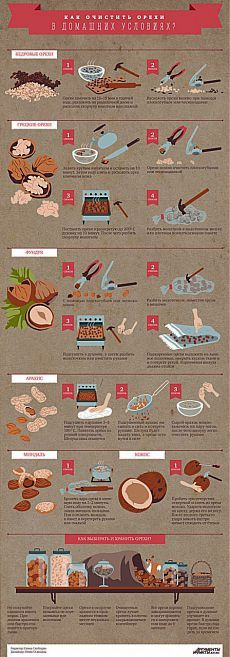 Как очистить орехи разных видов от скорлупы: инфографика   АиФ Кухня
