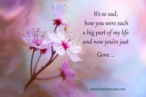 It's so sad ...