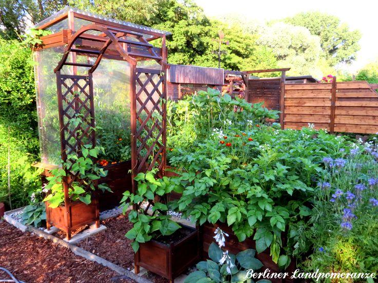 Hochbeet bepflanzen hochbeet bepflanzen so w chst das gem - Garten anfanger ...