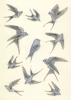 Flying Swallow Drawing Swallow drawings embroidery