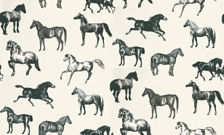 Collette (760-91) - Sandberg Wallpapers - A stunning horse motif design – with different breeds of horse drawn in a naturalistic etching style.   Available in 4 colourways – shown in the black and white set against a cool cream background.