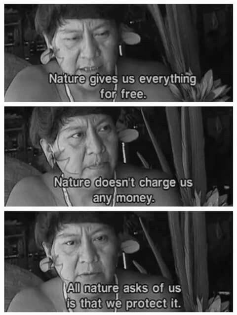 All nature asks of us is that we protect it. - Davi Kopenawa Yanomami from the documentary Indians in Brazil: Children of the Land (Mother Earth)