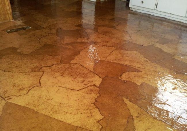 Brown Paper Bag Floors