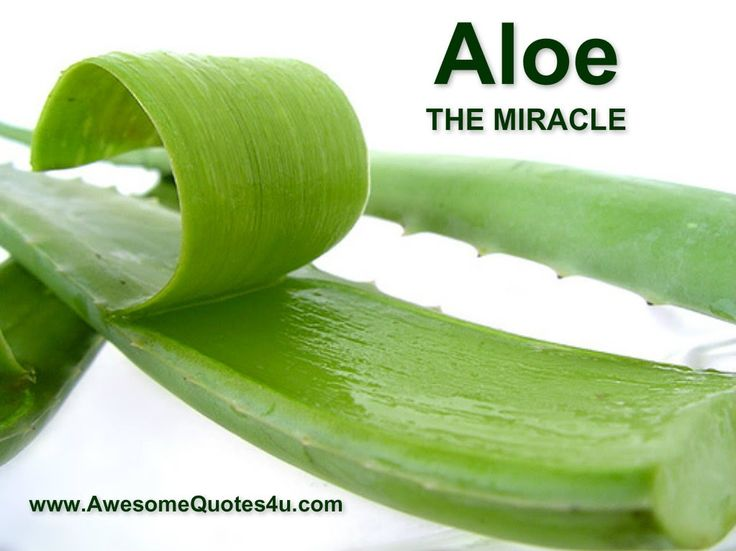 Aloe is great for Crohn's.  We'll see if Michael can tolerate some aloe juice.  Soon we will discover if the flavorless aloe juice is accurately named.