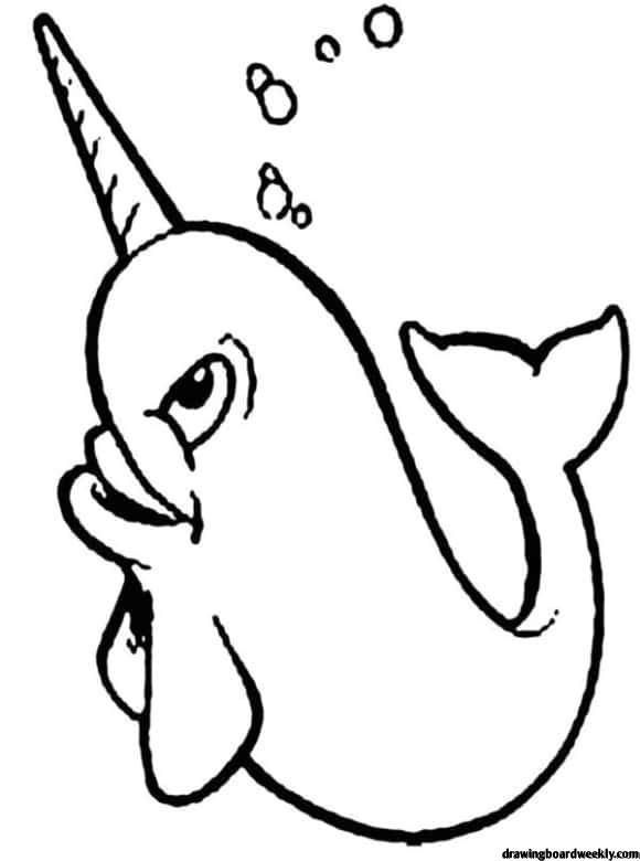 Narwhal Coloring Page Coloring Pages Whale Coloring Pages Cute Narwhal