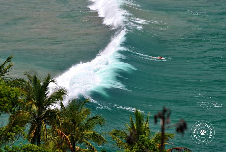 Bonete (Ilhabela/Brasil) paraíso para os surfistas - Foto: Márcio Bortolusso