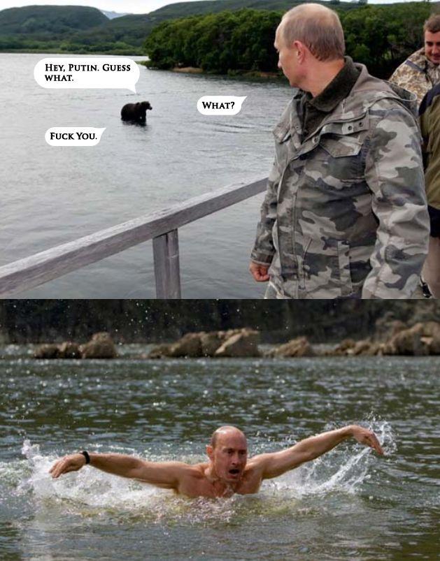 Putin vs. Bear | For The Lulz | Pinterest | Mothers ... Vladimir Putin Funny Bear