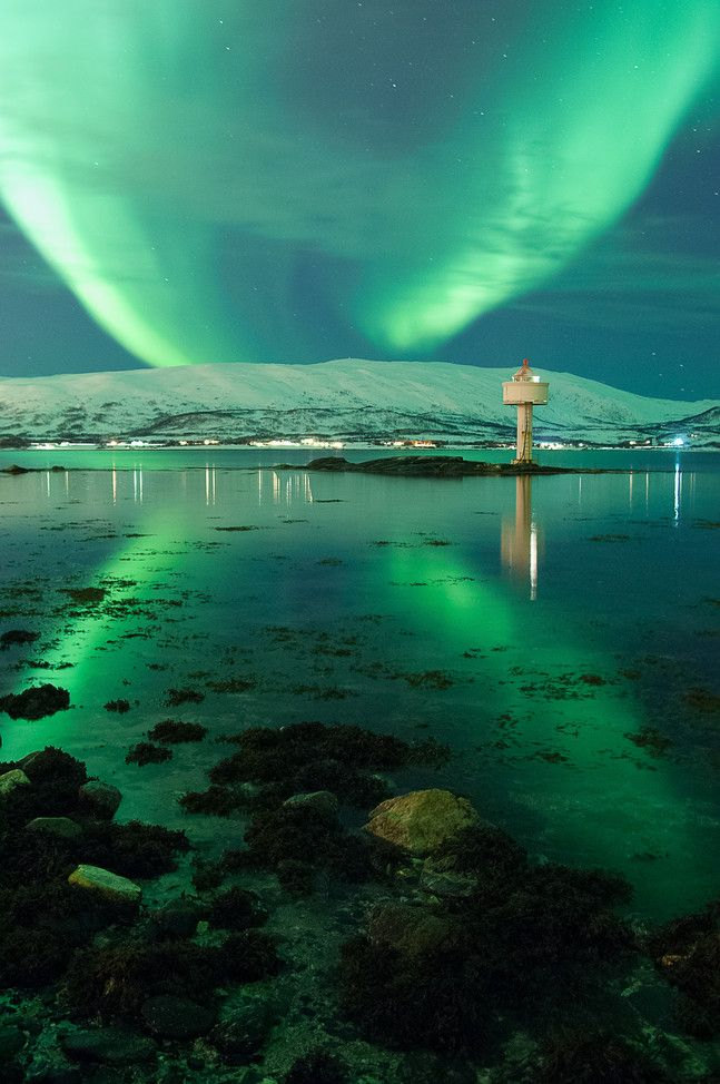 Northern light (aurora borealis) in Troms�, Norway