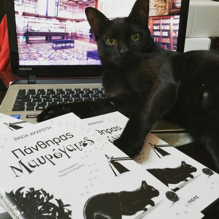 My book and my black cat